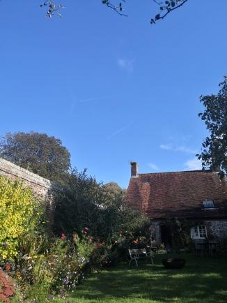 Jacky's back garden