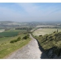 Glynde view for colour innature